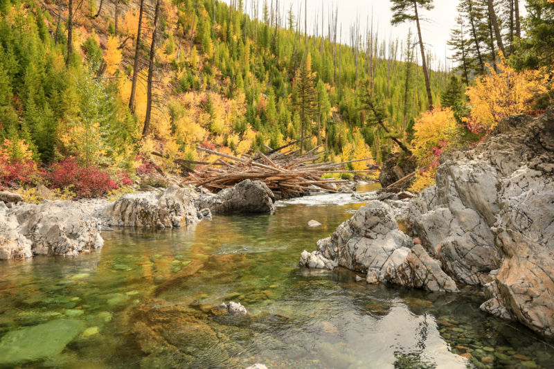 North Fork of the Blackfoot River